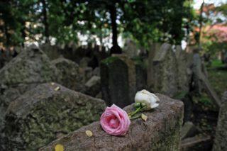 cemetery-1210596_1920