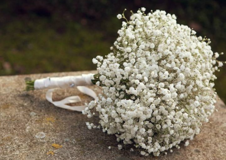 paniculata-bouquet-flower-ideas