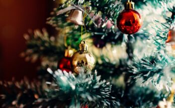 Le leggende di Natale